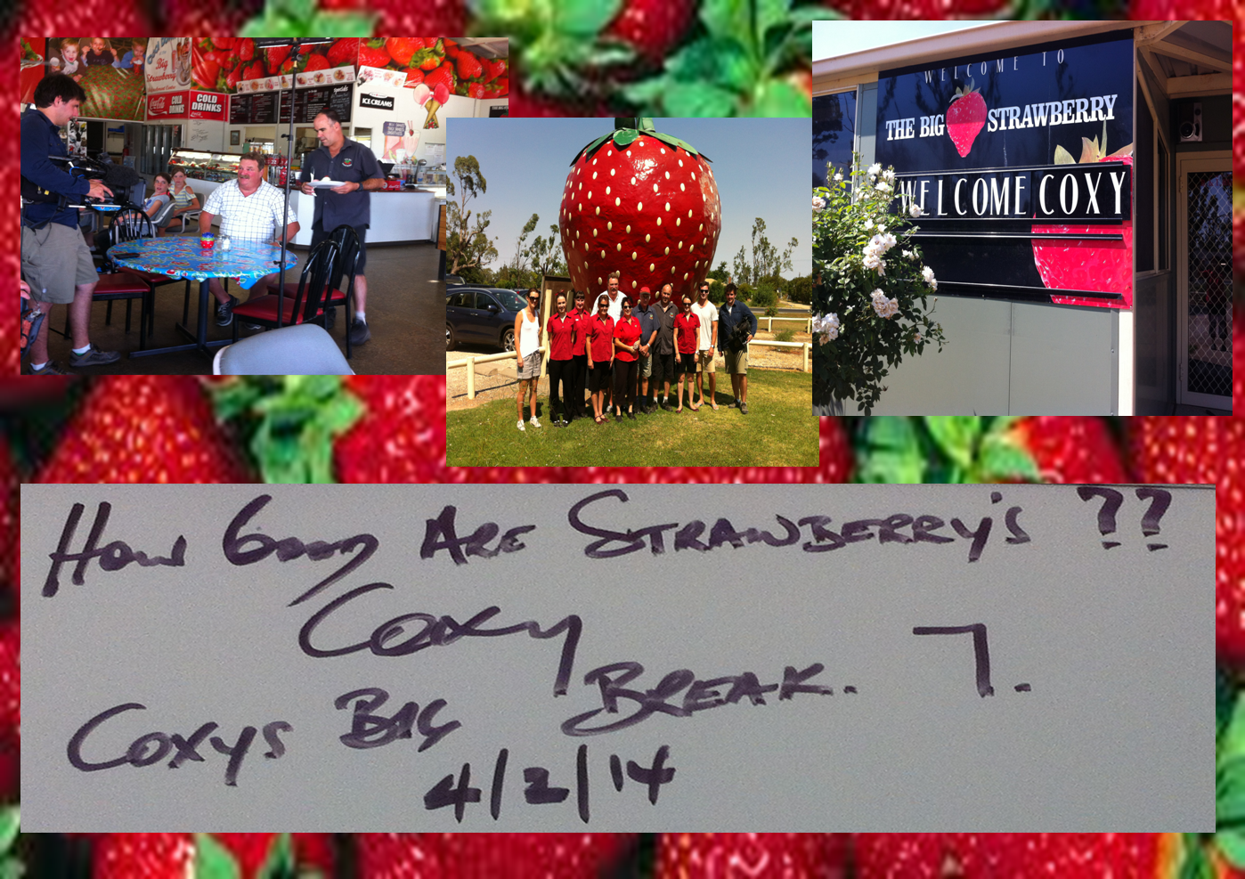 Coxy visits the big Strawberry