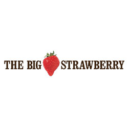 The BIG Strawberry Icon