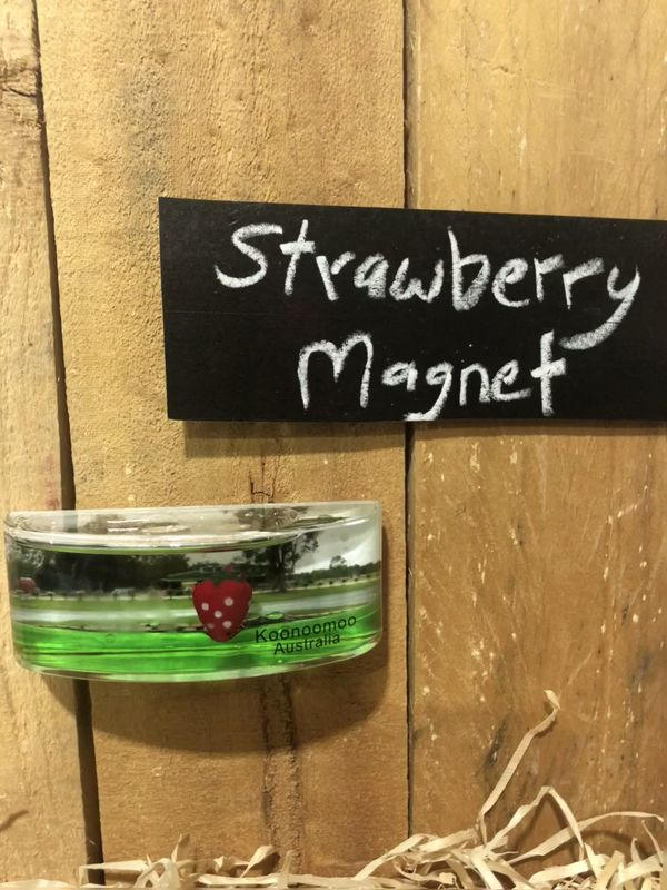 Big Strawberry Floating  Magnet