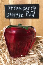 Big Strawberry Storage Pod